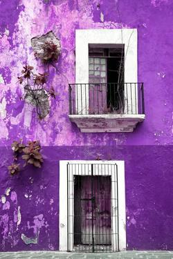 ¡Viva Mexico! Collection - Purple Wall by Philippe Hugonnard