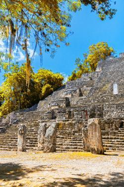 ¡Viva Mexico! Collection - Ruins of the ancient Mayan city with Fall Colors of Calakmul II by Philippe Hugonnard
