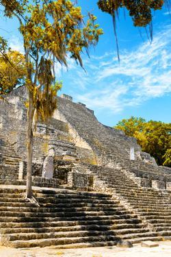 ¡Viva Mexico! Collection - Ruins of the ancient Mayan city with Fall Colors of Calakmul IV by Philippe Hugonnard