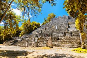 ¡Viva Mexico! Collection - Ruins of the ancient Mayan city with Fall Colors of Calakmul by Philippe Hugonnard