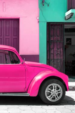 ¡Viva Mexico! Collection - The Deep Pink Beetle by Philippe Hugonnard
