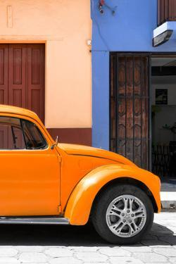 ¡Viva Mexico! Collection - The Orange Beetle by Philippe Hugonnard
