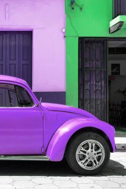 ¡Viva Mexico! Collection - The Purple Beetle by Philippe Hugonnard