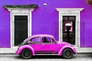 ¡Viva Mexico! Collection - VW Beetle - Purple & Deep Pink by Philippe Hugonnard