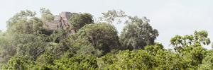 ¡Viva Mexico! Panoramic Collection - Ancient Maya City within the Jungle - Calakmul by Philippe Hugonnard