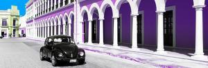 ¡Viva Mexico! Panoramic Collection - Black VW Beetle and Plum Architecture by Philippe Hugonnard