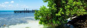 ¡Viva Mexico! Panoramic Collection - Caribbean Coastline III by Philippe Hugonnard
