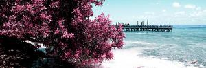 ¡Viva Mexico! Panoramic Collection - Caribbean Coastline IV by Philippe Hugonnard
