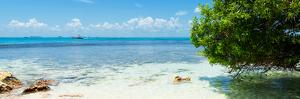 ¡Viva Mexico! Panoramic Collection - Caribbean Coastline by Philippe Hugonnard