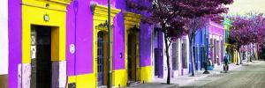 ¡Viva Mexico! Panoramic Collection - Colorful Street in Oaxaca I by Philippe Hugonnard