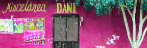 ¡Viva Mexico! Panoramic Collection - Deep Pink Dani Supermarket by Philippe Hugonnard