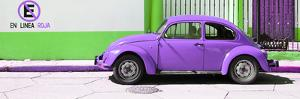 "¡Viva Mexico! Panoramic Collection - ""En Linea Roja"" Purple VW Beetle Car by Philippe Hugonnard"