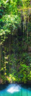 ¡Viva Mexico! Panoramic Collection - Hanging Roots of Ik-Kil Cenote II by Philippe Hugonnard