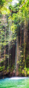 ¡Viva Mexico! Panoramic Collection - Hanging Roots of Ik-Kil Cenote IV by Philippe Hugonnard