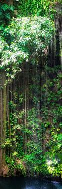 ¡Viva Mexico! Panoramic Collection - Hanging Roots of Ik-Kil Cenote VII by Philippe Hugonnard