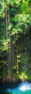 ¡Viva Mexico! Panoramic Collection - Hanging Roots of Ik-Kil Cenote by Philippe Hugonnard
