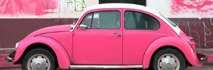¡Viva Mexico! Panoramic Collection - Hot Pink VW Beetle by Philippe Hugonnard