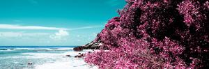 ¡Viva Mexico! Panoramic Collection - Isla Mujeres Coastline II by Philippe Hugonnard