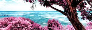 ¡Viva Mexico! Panoramic Collection - Isla Mujeres Coastline IV by Philippe Hugonnard