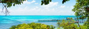 ¡Viva Mexico! Panoramic Collection - Isla Mujeres Coastline V by Philippe Hugonnard