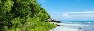¡Viva Mexico! Panoramic Collection - Isla Mujeres Coastline by Philippe Hugonnard
