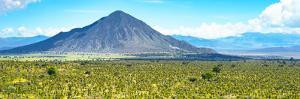 ¡Viva Mexico! Panoramic Collection - Mexican Desert by Philippe Hugonnard