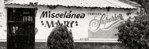 ¡Viva Mexico! Panoramic Collection - Miscelanea Mary by Philippe Hugonnard