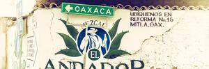¡Viva Mexico! Panoramic Collection - Oaxaca Direction II by Philippe Hugonnard