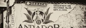 ¡Viva Mexico! Panoramic Collection - Oaxaca Direction III by Philippe Hugonnard
