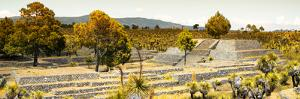 ¡Viva Mexico! Panoramic Collection - Pyramid of Cantona - Puebla II by Philippe Hugonnard