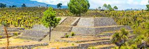 ¡Viva Mexico! Panoramic Collection - Pyramid of Cantona - Puebla IV by Philippe Hugonnard