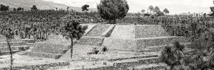 ¡Viva Mexico! Panoramic Collection - Pyramid of Cantona - Puebla VII by Philippe Hugonnard