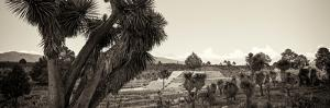 ¡Viva Mexico! Panoramic Collection - Pyramid of Cantona - Puebla XI by Philippe Hugonnard