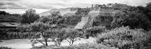 ¡Viva Mexico! Panoramic Collection - Pyramid of Monte Alban I by Philippe Hugonnard