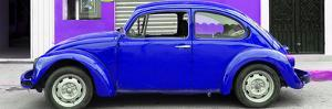 ¡Viva Mexico! Panoramic Collection - Royal Blue VW Beetle Car by Philippe Hugonnard