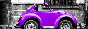 ¡Viva Mexico! Panoramic Collection - Small Purple VW Beetle Car by Philippe Hugonnard