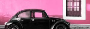 ¡Viva Mexico! Panoramic Collection - The Black VW Beetle Car with Light Pink Wall by Philippe Hugonnard
