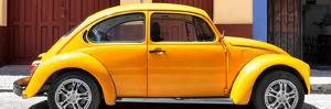 ¡Viva Mexico! Panoramic Collection - The Dark Yellow Beetle Car by Philippe Hugonnard