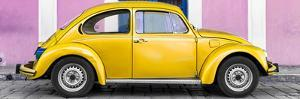 ¡Viva Mexico! Panoramic Collection - The Gold VW Beetle Car with Light Pink Street Wall by Philippe Hugonnard