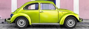 ¡Viva Mexico! Panoramic Collection - The Lime Green VW Beetle Car with Light Pink Street Wall by Philippe Hugonnard
