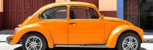 ¡Viva Mexico! Panoramic Collection - The Orange Beetle Car by Philippe Hugonnard
