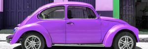 ¡Viva Mexico! Panoramic Collection - The Purple Beetle Car by Philippe Hugonnard