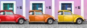 ¡Viva Mexico! Panoramic Collection - Three VW Beetle Cars with Colors Street Wall VII by Philippe Hugonnard