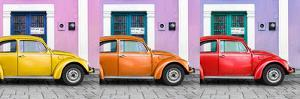 ¡Viva Mexico! Panoramic Collection - Three VW Beetle Cars with Colors Street Wall XVII by Philippe Hugonnard
