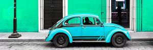 ¡Viva Mexico! Panoramic Collection - VW Beetle Car - Coral Green & Turquoise by Philippe Hugonnard