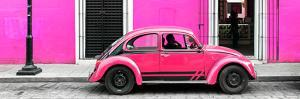 ¡Viva Mexico! Panoramic Collection - VW Beetle Car - Deep & Hot Pink by Philippe Hugonnard