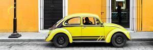 ¡Viva Mexico! Panoramic Collection - VW Beetle Car - Gold & Yellow by Philippe Hugonnard