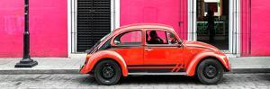 ¡Viva Mexico! Panoramic Collection - VW Beetle Car - Pink & Red by Philippe Hugonnard