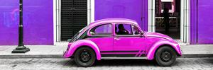 ¡Viva Mexico! Panoramic Collection - VW Beetle Car - Purple & Deep Pink by Philippe Hugonnard