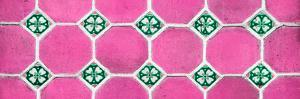 ¡Viva Mexico! Panoramic Collection - Wall of Pink Mosaics by Philippe Hugonnard